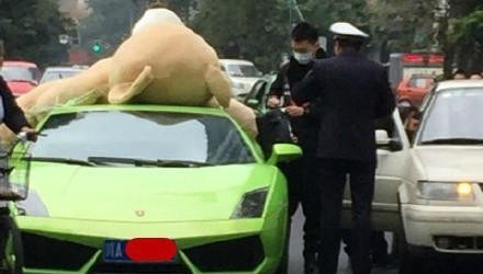 Driver Fined For Strapping Giant Teddy Bear To Roof Of